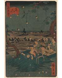 Dōkanyama Mushi Kiki, Photograph 02363V by Utagawa, Hirokage