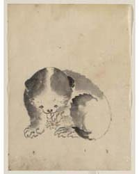 A Cat Cleaning Its Claws, Photograph 027... by Katsushika, Hokusai