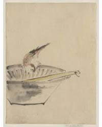 A Bird Perched on the Edge of a Bowl, wi... by Katsushika, Hokusai