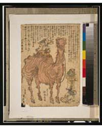 Camel, Photograph 3G09990V by Utagawa, Kuniyasu
