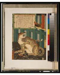 Konjaku Miken Seibutsu Mōko No Shinzu, P... by Utagawa, Kyōsai