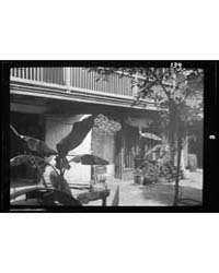 Courtyard, New Orleans, Photograph 7A027... by Genthe, Arnold