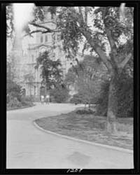 St. Louis Cathedral from Jackson Square,... by Genthe, Arnold