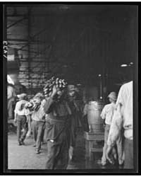 Unloading Bananas, New Orleans, Photogra... by Genthe, Arnold