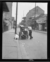 Organ Grinder, New Orleans, Photograph 7... by Genthe, Arnold