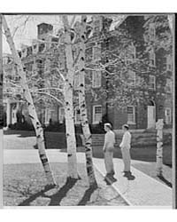 Schools. Hotchkiss School, Birches Again... by Schleisner, Gottscho
