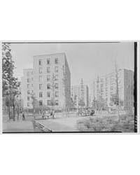 Vladeck Houses, Madison St., New York Ci... by Schleisner, Gottscho