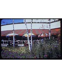 World's Fair. Flowers and Trees in Front... by Schleisner, Gottscho