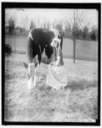 Eckles, Virginia. in Dutch Dairy-maid Co... by Harris & Ewing
