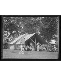 Cricket, Photograph Number 41486V by Harris & Ewing
