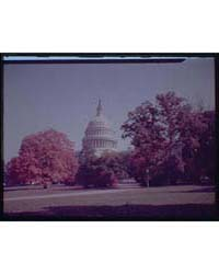 U.S. Capitol Exteriors. U.S. Capitol wit... by Horydczak, Theodor