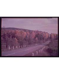 Maryland Views. Autumn Scene Near Point ... by Horydczak, Theodor