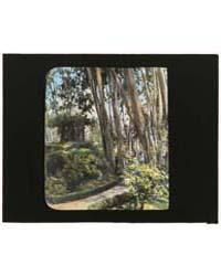 Unidentified House, Possibly Pasadena, C... by Johnston, Frances Benjamin