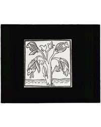 Reproduction of Print Showing Lamb Tree,... by Johnston, Frances Benjamin