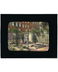 Unidentified Townhouse Garden, Probably ... by Johnston, Frances Benjamin