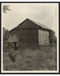 Unidentified Cabin, Natchez Vic., Adams ... by Johnston, Frances Benjamin