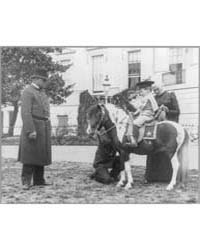 Quentin Roosevelt on Pony in Front of Wh... by Johnston, Frances Benjamin