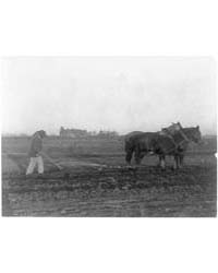 Improved Method of Plowing, Photograph N... by Johnston, Frances Benjamin