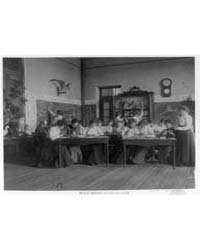 Students Studying Birds in Biology Class... by Johnston, Frances Benjamin