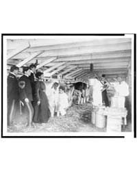 Demonstration of Milk Testing in Stable,... by Johnston, Frances Benjamin