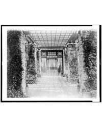 View of Pergola, Toward Door, to Home of... by Johnston, Frances Benjamin