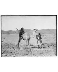 Various Types, Etc. Riding on Camel, Pho... by American Colony Jerusalem