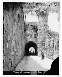 Tower of Antonia, Jerusalem., Photograph... by American Colony Jerusalem