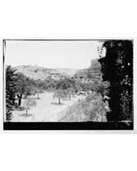 Mount of Olives Jebel Et-tur Etc. Valley... by American Colony Jerusalem