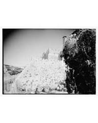 Citadel & Tower of David, Photograph 085... by Library of Congress