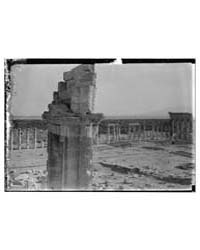 Ruins of a Colonnade, Photograph 11327V by Library of Congress
