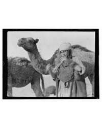 Iraq, Boy or Girl with Camels, Photograp... by American Colony Jerusalem