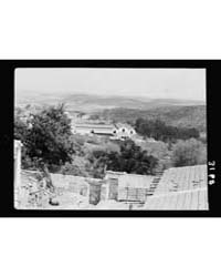 Zionist Colonies on Sharon. Yakob, Wine ... by American Colony Jerusalem