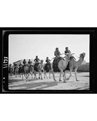 Beersheba, Inspection of Camel Corps by ... by American Colony Jerusalem