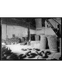 Jewish Factories in Palestine on Plain o... by American Colony Jerusalem