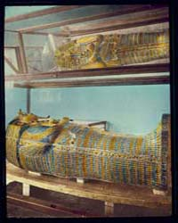 Egypt. Cairo. King Tutankhamun's Coffin,... by Matson Photo Service