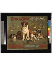 Bench Show New England Kennel Club, Phot... by Library of Congress