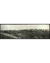 Petrified Forest of Arizona, Photograph ... by Library of Congress