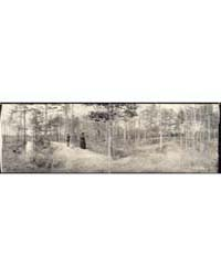 Seven Pines Battlefield, Photograph Numb... by Library of Congress
