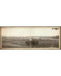 Grand Review, U.S.V.I., Chickamauga, Ga.... by Library of Congress