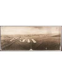 Sheep Yards, Kirkland, Ill., Photograph ... by Library of Congress