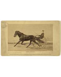 Occident. Owned by Leland Stanford. Driv... by Muybridge, Eadweard