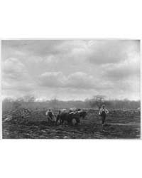 Spring Ploughing, New England, Photograp... by Tingley, George E.
