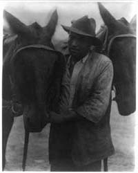 Negro with Two Horses, Photograph Number... by Ulmann, Doris