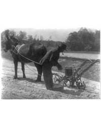 Negro with Cultivator, Photograph Number... by Ulmann, Doris