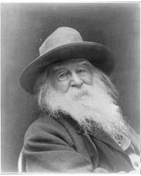 Walt Whitman, Three-quarter Length Portr... by Cox, George C.