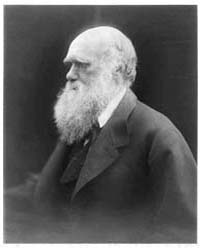 Portrait of Charles Darwin, Photograph N... by Cameron, Julia Margaret