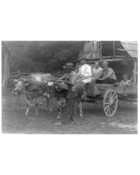 Family in Wagon Drawn by Oxen, Photograp... by Ulmann, Doris