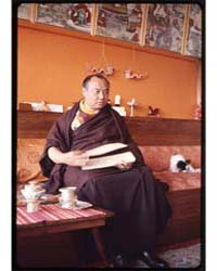 Rangjung Rigpe Dorje, the 16Th Karmapa L... by Kandell, Alice S.