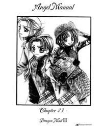 Angel Manual 23 Volume Vol. 23 by Kumiko, Kikuchi