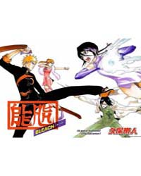 Bleach 252 : Rebut to the Baron's Lectur... Volume No. 252 by Kubo, Tite